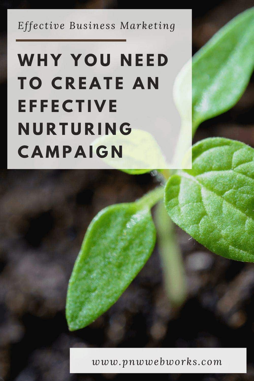 Why You Need to Create an Effective Nurturing Campaign